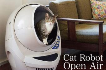ペットを飼いたい独身貴族におすすめ猫のトイレ掃除とニオイの悩みを解決<Open Air (オープンエアー)>
