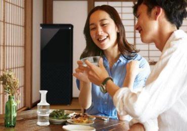 氷温貯蔵が可能な「SAKE CABINET(サケキャビネット)」で 日本酒をもっと美味しく!